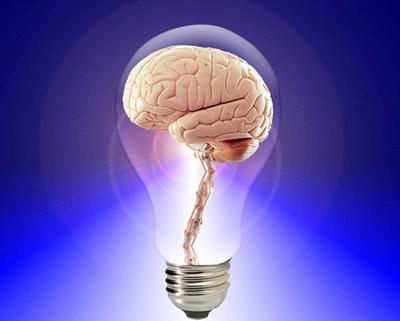 ヒラメキを得る脳